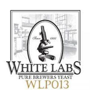 Levadura cerveza LONDON ALE WLP013